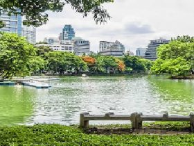 Silom,MRT,シーロム,ジョギング,公園,広場,散歩,ミズオオトカゲ,Lunpini Park,タイ,バンコク,観光,観光スポット,ルンピニー公園,ルンピニー,スタジアム,移転