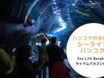 タイ,バンコク,水族館,サイアムオーシャンワールド,シーライフバンコク,サイアム駅,サイアムパラゴン,レジャー,観光,Sea Life Bangkok,ซี ไลฟ์ บางกอก โอเชียนเวิลด์