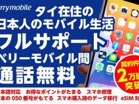 ベリーモバイル,Simカード,携帯電話,日本語,日本人